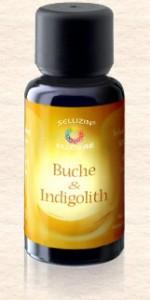 11 Beech & Indigoliet